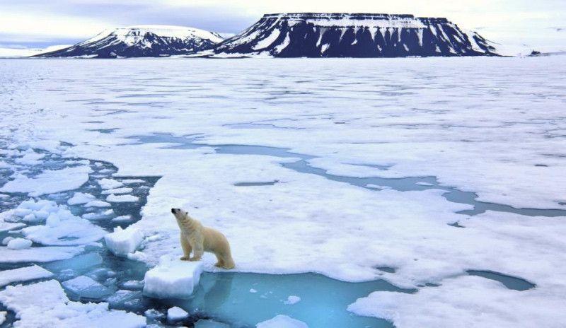 Cómo ser triatleta en el Ártico... y no morir en el intento